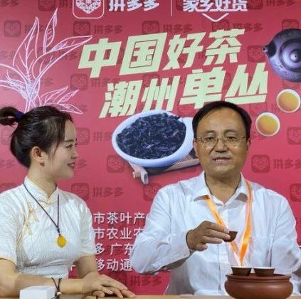 2020广州茶博会:潮州工夫茶进拼多多直播,超56万人品潮州单丛