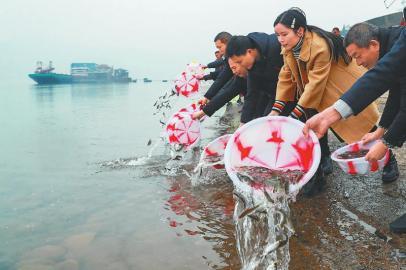 泸州:14万余尾鱼苗入长江