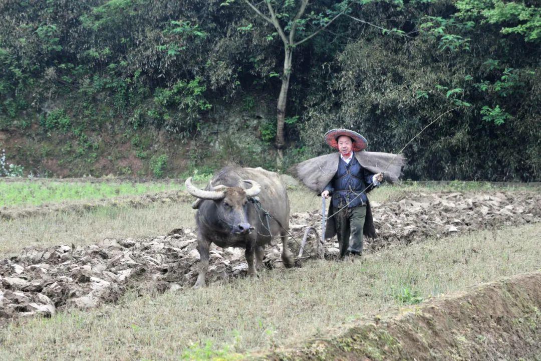 从省会市长到农民的李豆罗在短视频平台上频频出镜图片