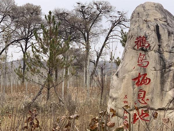 左权县赵家庄:绿水青山就是金山银山