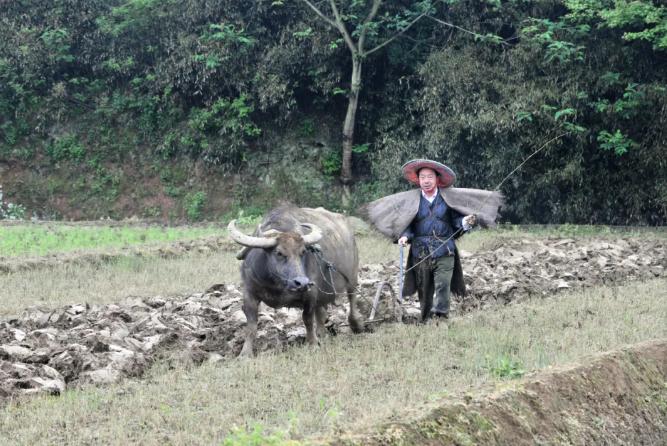 对话南昌原市长李豆罗:从农民到市长四十年,当回农民花了四小时图片