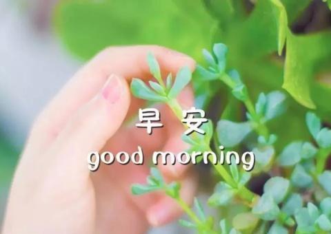 早安唯美心语句子说说心情早安正能量经典语录好看的早安图片