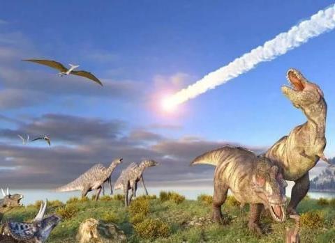 """生物绝事件频发!难道我们已经到了""""世界末日""""了吗?"""