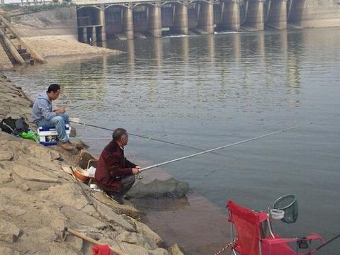 降温当天到底能不能钓鱼,这事还真得分情况