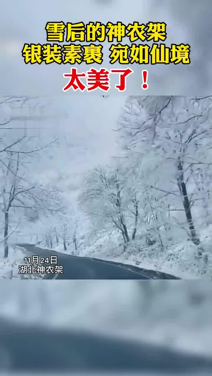 雪后的神农架,确定这不是仙境吗?太美了吧!