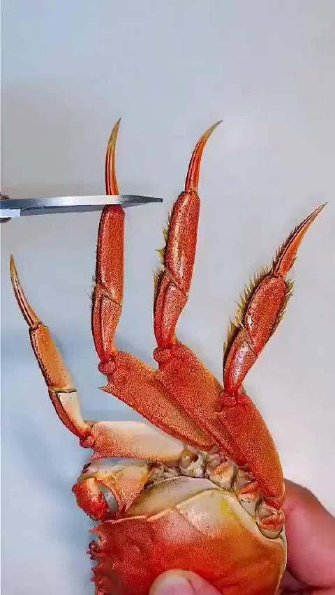 最详细的阳澄湖大闸蟹吃法,你学会了吗?