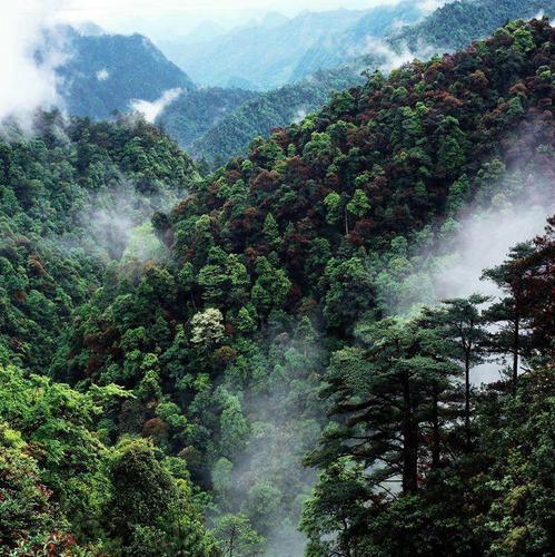 广东粤北南岭山区山水林田湖草生态保护修复试点已投资71亿,今年底可完成主体工程42个