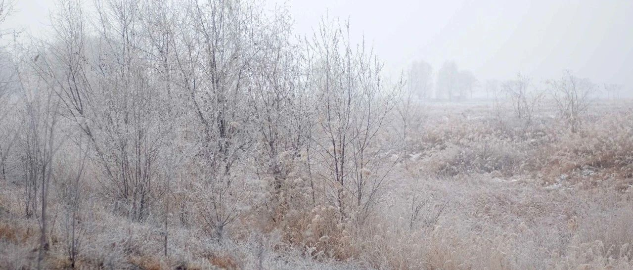 银川明天要下雪,最高温度跌至0℃以下!