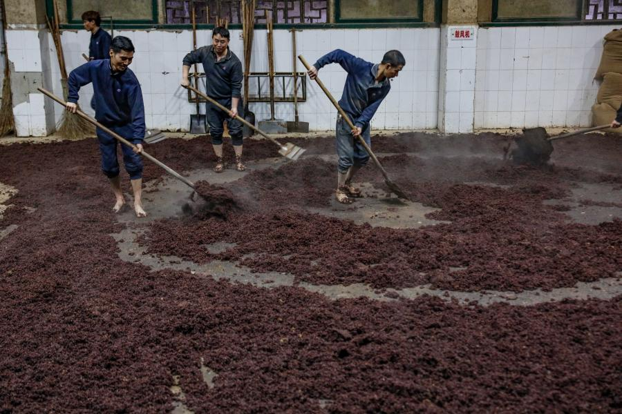 Workers mix grains with yeast at a distillery in Maotai town of Renhuai, southwest China's Guizhou Province, Nov. 28, 2020. Maotai is a small town in Renhuai City in mountainous Guizhou. What distinguishes it from other towns is that it produces a famous brand of Chinese liquor Moutai. The spirit, made from sorghum and wheat, takes up to one year for the whole production process, involving nine times of steaming, eight times of fermentation and seven times of distillation, before aged in clay pots. (Xinhua/Ou Dongqu)