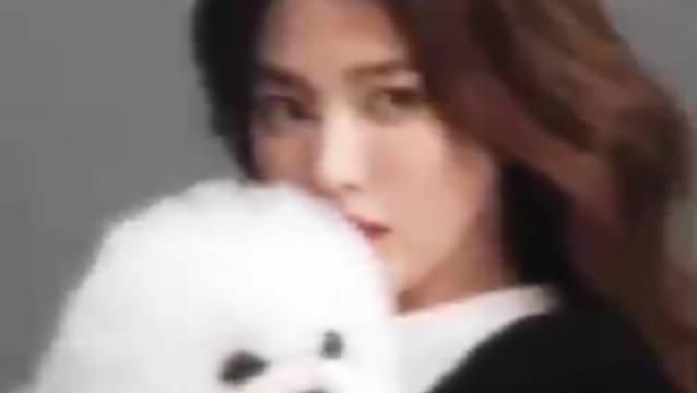 宋慧乔登上《VOGUE HK》12月刊封面,怀抱爱犬Ruby出镜…………