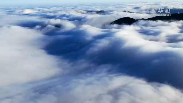"""【""""飞阅""""中国】雪霁神农架 你绝对没有见过的云海景观"""