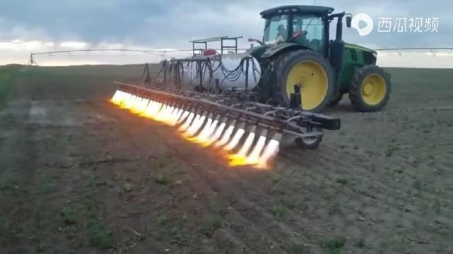 美国农民用火焰拖拉机除草除虫,你们觉得效果怎么样