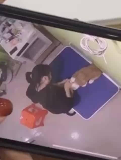 网友@只是风未吹过 投稿: 瓜旺之家无良店员虐狗摔狗…………