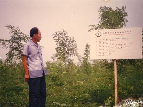 """河南民权:三代人接力 共筑""""绿色长城"""""""