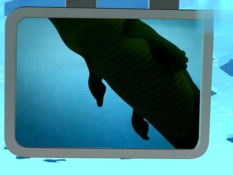 海底小纵队:谢灵通通过调查,确认了是湾鳄,是世界上最大的鳄鱼