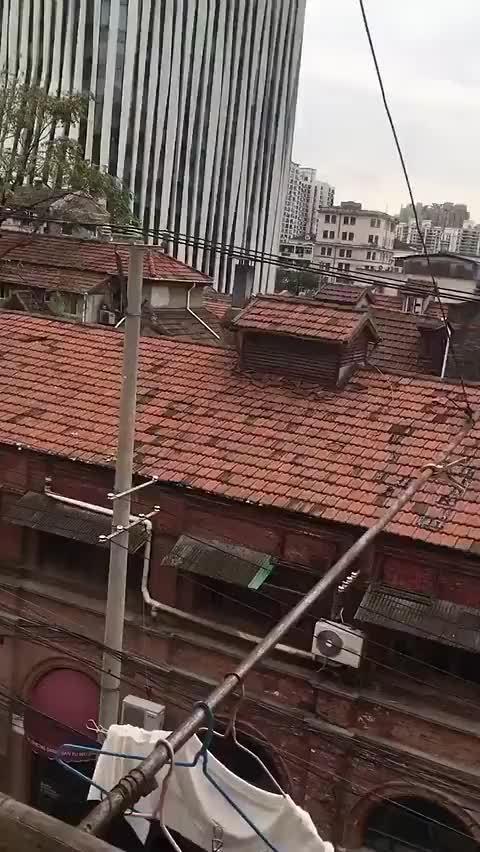 网友: 谁说上海没有穷人,这里距离东方明珠走路10分钟!……