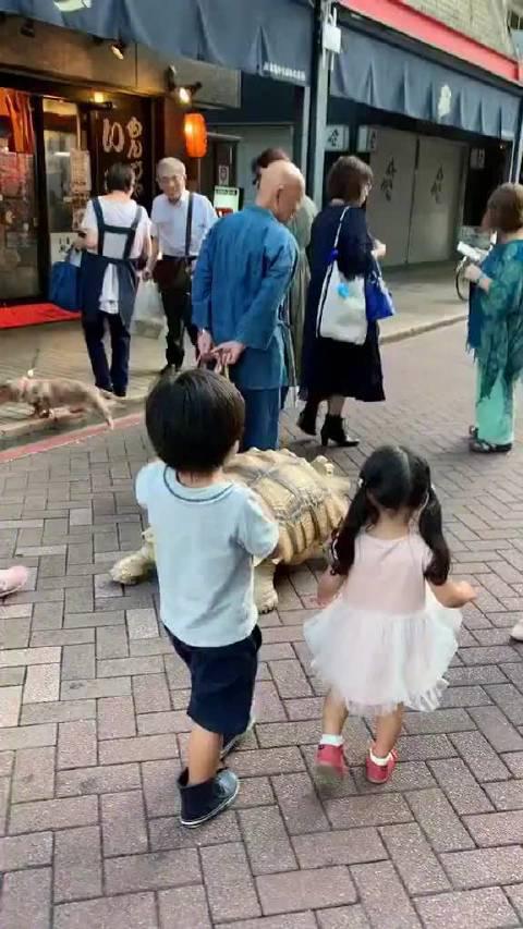 龟:你爷爷小时候也这么调皮
