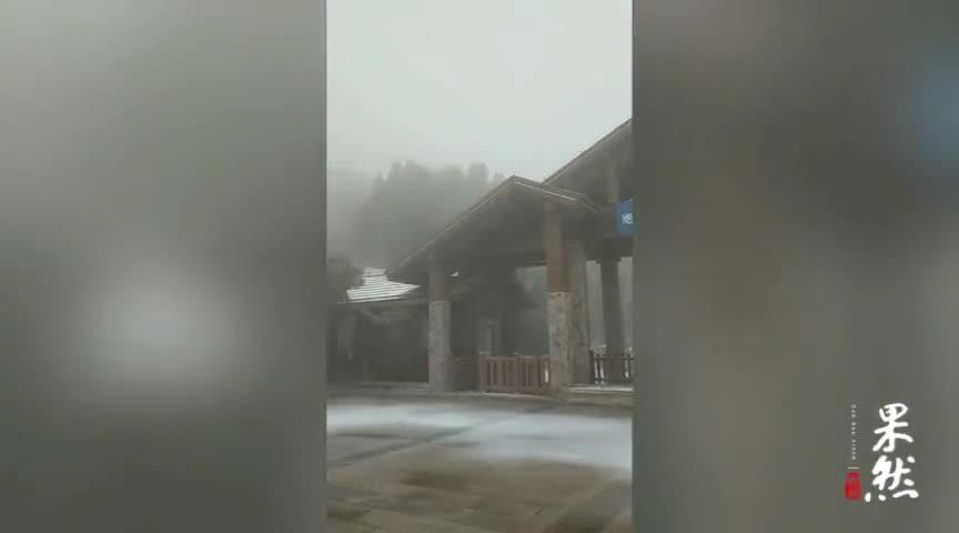 果然视频|济南南部山区又迎降雪!瞧瞧雪花飘落的美景