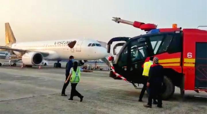 印度客机遭蜜蜂围攻致航班延误 遍布的蜂群似机身裂出黑色巨洞
