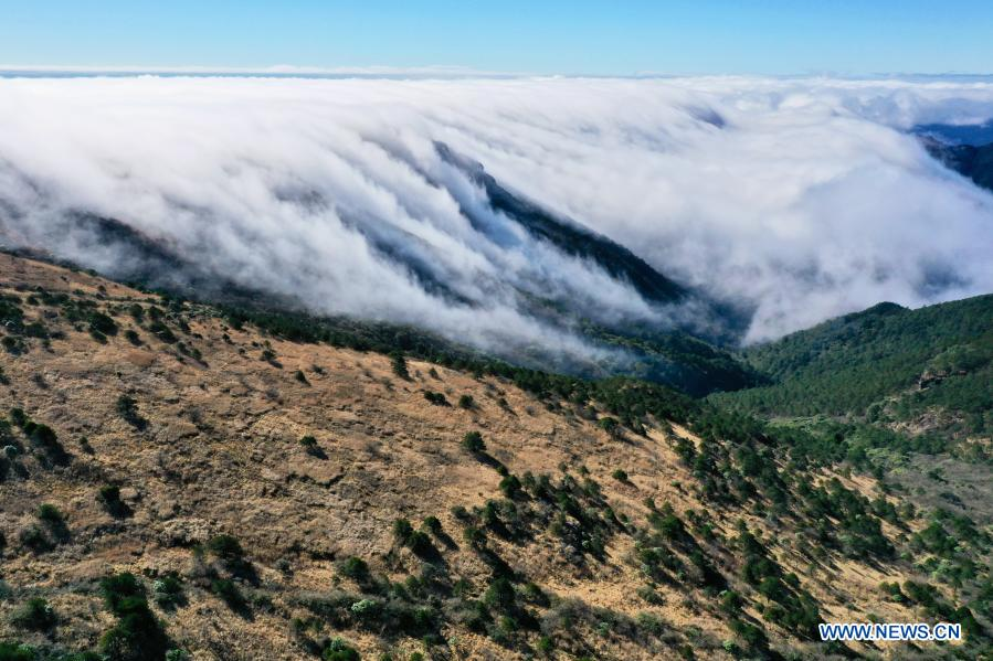 Aerial photo taken on Dec. 1, 2020 shows a cloud scenery at Wuyishan National Park, southeast China's Fujian Province. Wuyishan National Park is one of the country's 10 pilot national parks, with 210.7 square kilometers primary forest vegetation preserved here. (Xinhua/Jiang Kehong)