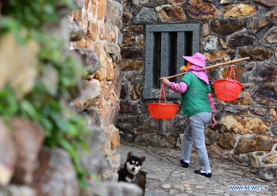 A villager walks along a lane in Zhangjiao Village in Tuling Township of Quan'gang District, Quanzhou City, southeast China's Fujian Province, on Dec. 1, 2020. Zhangjiao Village, located in the northwest mountainous area of Tuling Township, has a unique scenery with its stone houses stacked on top of each other. In recent years, Quan'gang District has made full use of the characteristic resources of Zhangjiao Village to develop ecological leisure tourism and promote the construction of beautiful countryside. (Xinhua/Wei Peiquan)