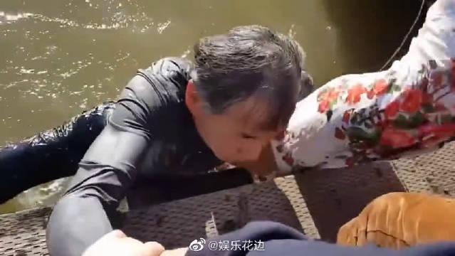 女孩坐水边观赏水里的海狮,突然被海狮叼下水,幸好外公反应及时