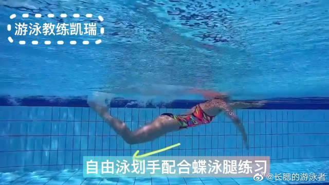 自由泳划手配合蝶泳腿练习,一起来学习一下吧!