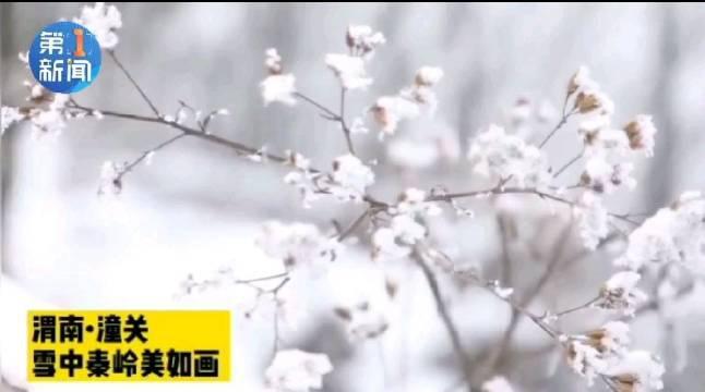 渭南潼关:雪中秦岭美如画