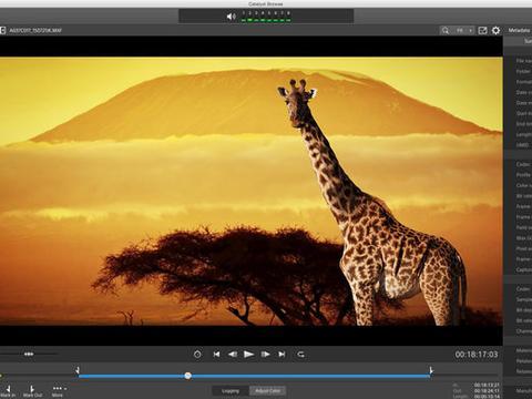 索尼Catalyst 2020.1版本更新 支持多相机平稳防抖