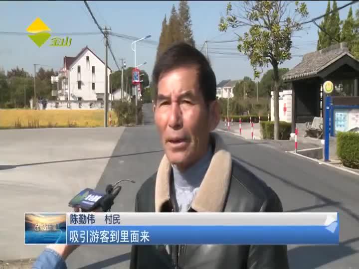 """枫泾落成""""农民画大道""""乡村旅游有增打卡地"""