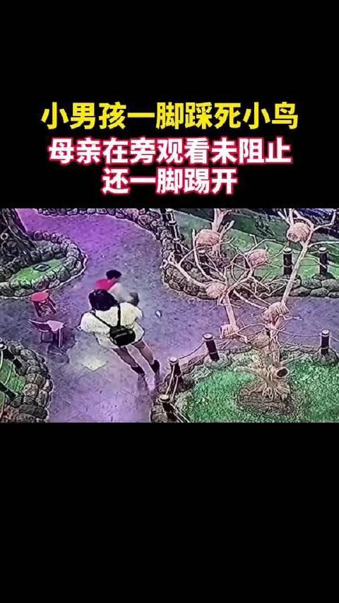 1日,江苏无锡一男孩在某宠物咖啡馆一脚踩死小鸟…………