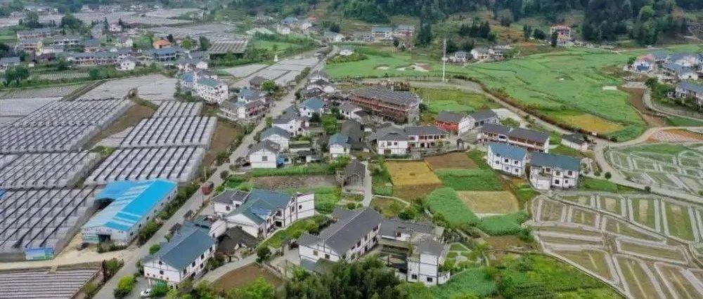 845.4亿元!全省41万个农村集体经济组织完成清产核资