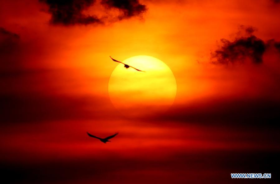 Birds are silhouetted against the sun while flying over the Yangon River during the sunset at Botahtaung harbour in Yangon, Myanmar, Dec. 1, 2020. (Xinhua/U Aung)