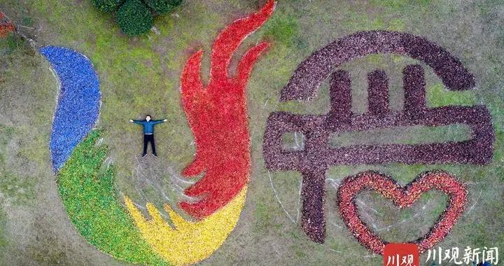 成都青白江:大运会会徽惊现凤凰湖,竟然是用落叶做的