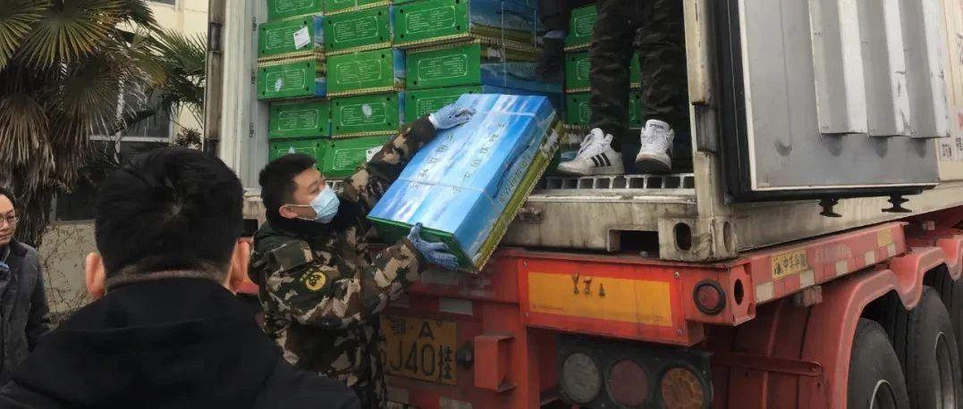 蒙古国捐赠羊抵达陕西!分配给他们!