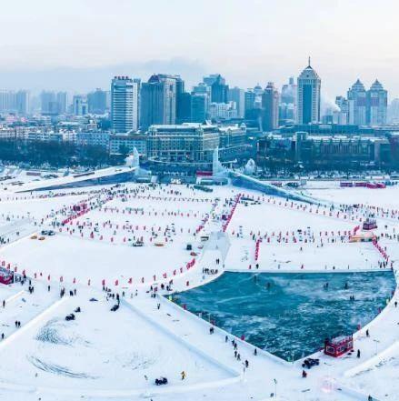 雪地飞鹤奇观、中国最北极点、世界首创极地动物表演秀……丨黑龙江打造最极致、最美好的冰雪盛筵