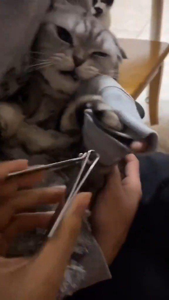 舍友怒喷:就剪个指甲而已,你发个什么痴啊