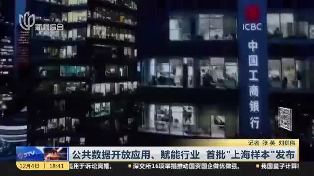 """公共数据开放应用、赋能行业  首批""""上海样本""""发布"""