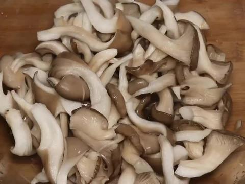 干炸蘑菇时,用面粉还是淀粉?教你正确挂糊配比,酥脆入味不回软