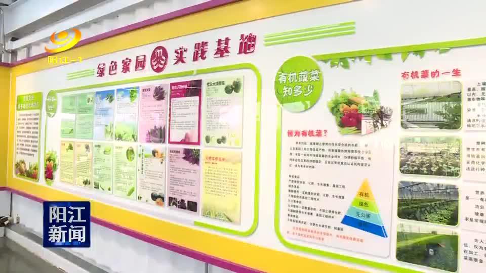 省妇联调研阳江妇女儿童发展规划实施工作