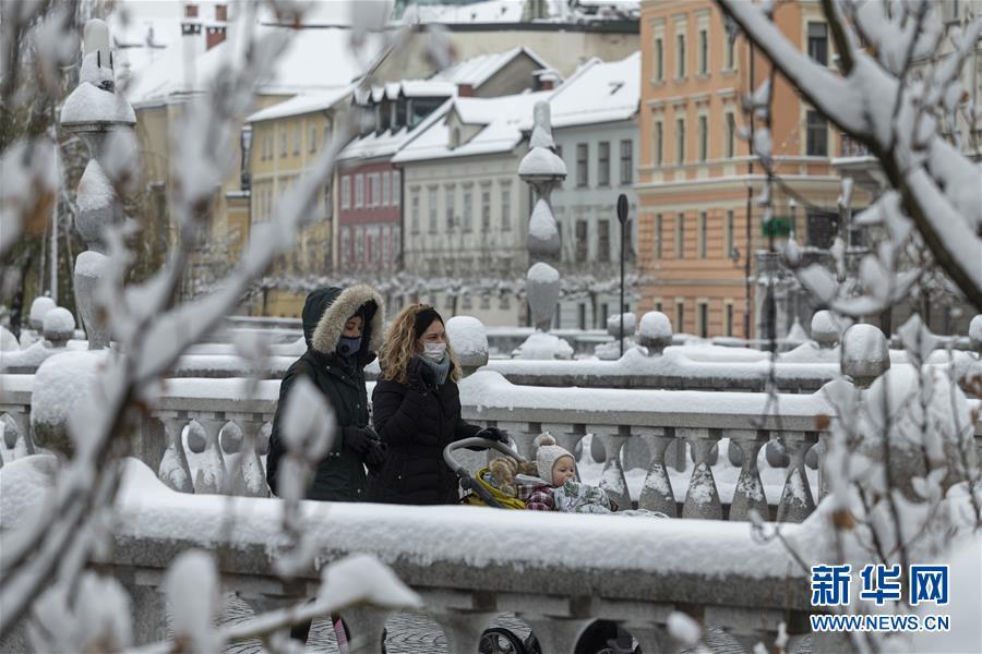 斯洛文尼亚将启动大规模新冠病毒检测