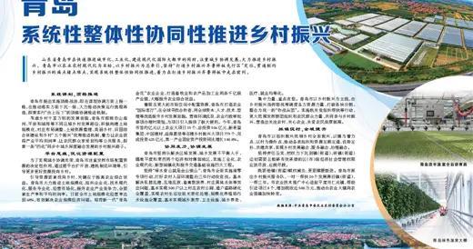 人民日报点赞青岛:系统性整体性协同性推进乡村振兴