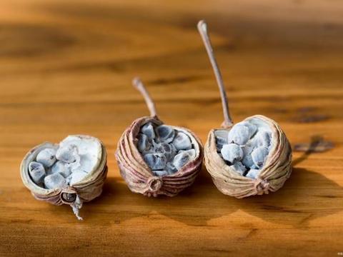 大厨告诉你麻鲜口味火锅底料之中香料配置的秘密值得学习