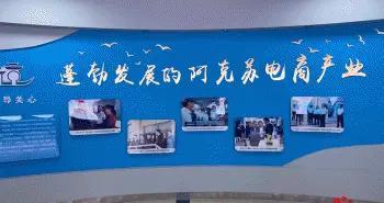 「外籍记者看新疆」新疆阿克苏:电商孵化脱贫致富梦