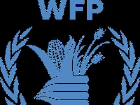 联合国粮食计划署:明年2.7亿人面临饥荒,120万儿童或死亡