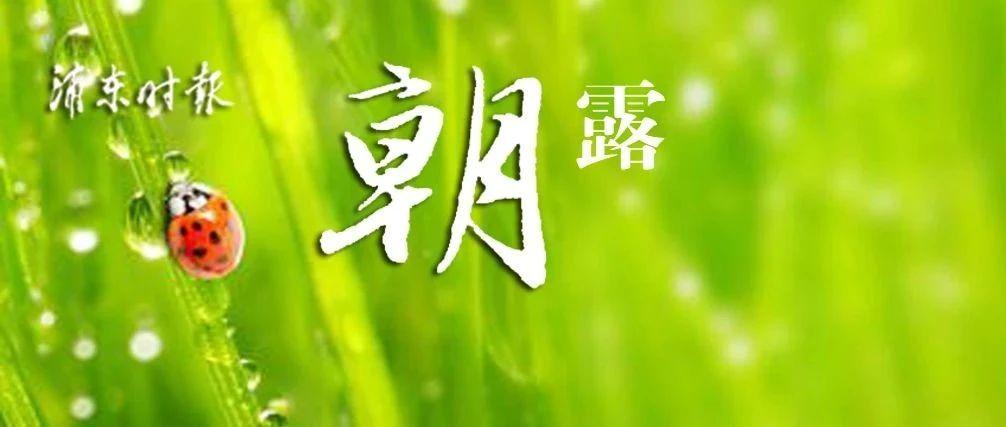 """疫情相关词汇占据2020热词榜!2021年元旦、五一、十一,上海各婚姻登记机构都上班!""""沪冷链""""信息化系统上线试运行"""