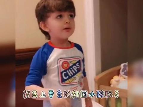 外国萌娃用中文说要学英语逗笑老爸:自己都不知道自己是外国人!
