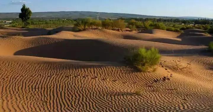 """它沙子多到能铺满宝岛台湾,因绿化率达93.24%""""濒临灭绝"""""""