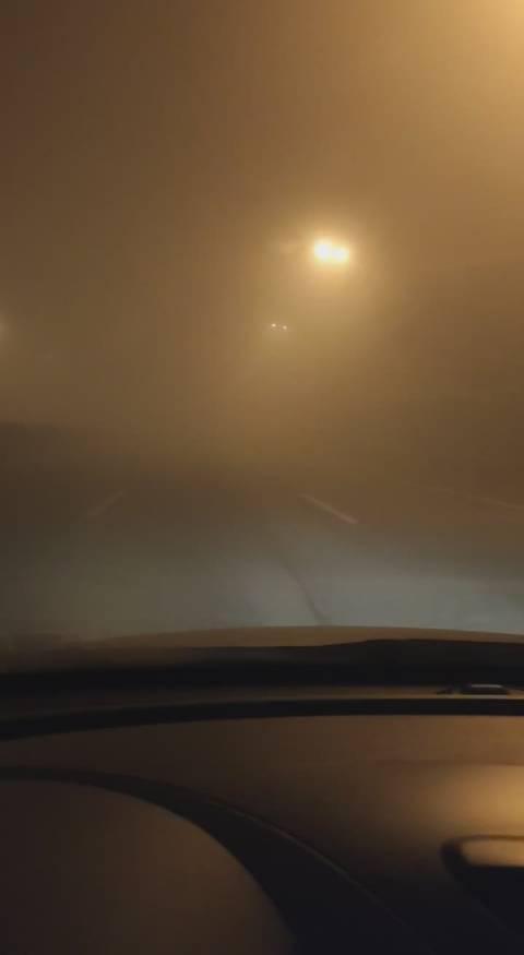 大雾天气,开车在路上注意安全,减速慢行!