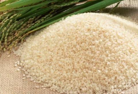 贵州好物产 石印有机大米---大自然的馈赠 一颗有灵魂的稻米